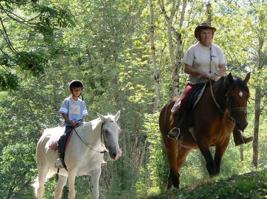 Centre Equestre La Ferme Du Lac