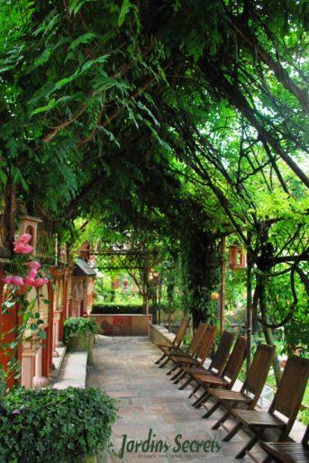 Sous la glycine Les Jardins Secrets évasion insolite proche d'Annecy visite-insolite-evasion-proche-annecy-les-jardins-secrets-famille-enfants-parc-fleurs-plantes-arbres-site-incontournable-vaulx-haute-savoieaix-les-bains-promenade-bucolique