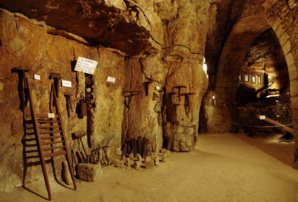 cave-champignon