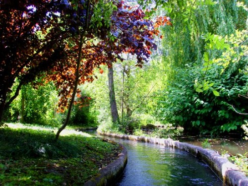 Jardin d'Acclimatation, activités et loisirs, Activité, 75116 Paris