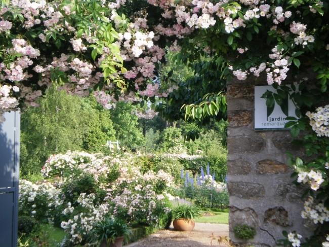 Les Jardins de Viels-Maisons visite-jardins-fleurs-plantes-de-viels-maisons-aisne-hauts-de-france