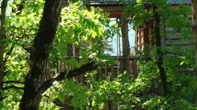 Week-end insolite dans la cabane perchée
