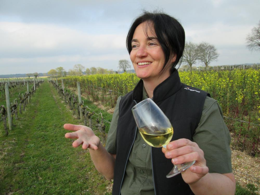 Les vignes selon Val, randonnées pédestres commentées