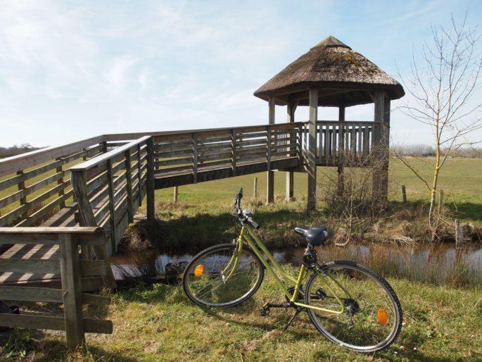 Val de Loire Ecotourisme, la Touraine en nature !-val-de-loire-ecotourisme-randonnee-decouverte-touraine-nature-culture-terroir-weekend-nature-insolite-indre-et-loire-gregoire-paquet-guide-accompagnateur