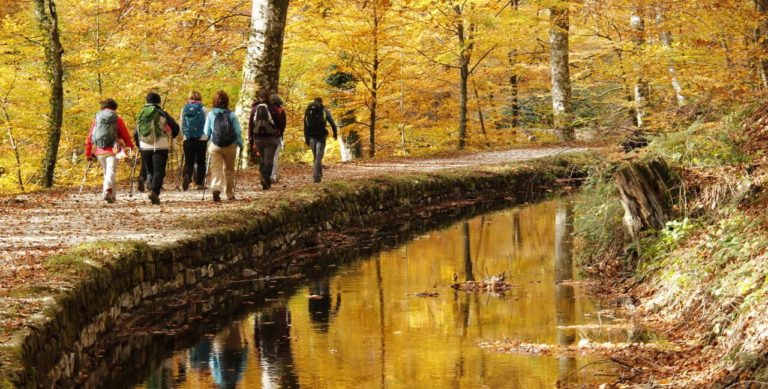 Nicolas Dreux randonnée montagne Noire en Pays Cathare nicolas-dreux-accompagnateur-randonnee-en-montagne-noire-pays-cathare-occitanie-aude-saissac-carcassonne-massif-central-rigole-canal-midi-sentier-balade-decouverte