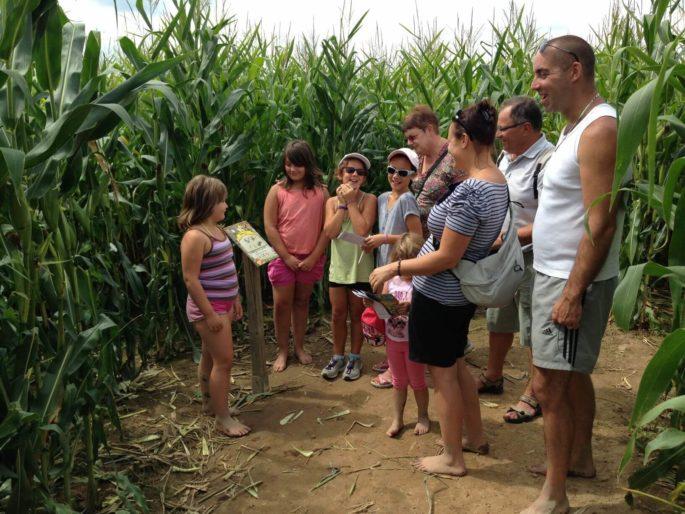 Labyrinthe de maïs 5  labyrinthes aventure et forêt enchantée... labyrinthes-loisir-detente-activite-enfants-famille-we-weekend-insolite-aventures-ferme-aventure-vosges