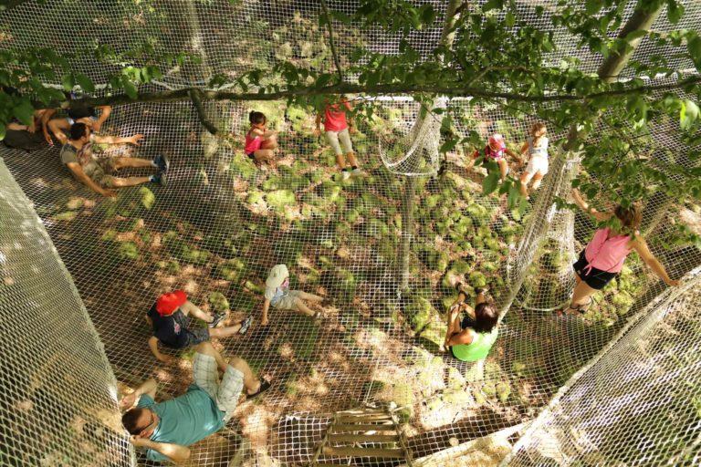 canopée 5  labyrinthes aventure et forêt enchantée... labyrinthes-loisir-detente-activite-enfants-famille-we-weekend-insolite-aventures-ferme-aventure-vosges