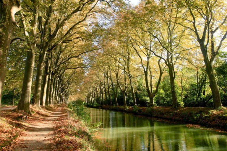 Canal du Midi à découvrir lors de votre séjour à la Maison Duffour à Tonneins